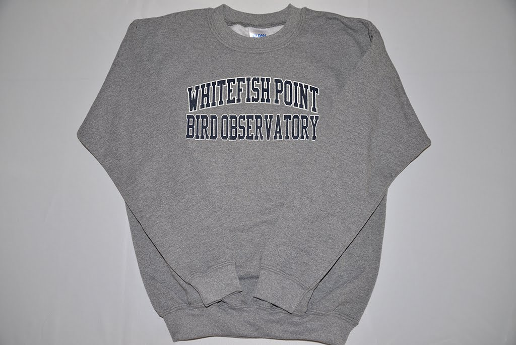 Kids Whitefish Point Bird Observatory Sweatshirt in Grey